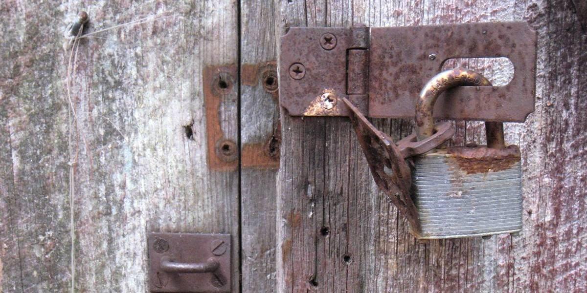 """Proyecto de ley busca prohibir que gobierno de EE.UU. obligue a instalar """"puertas traseras"""""""