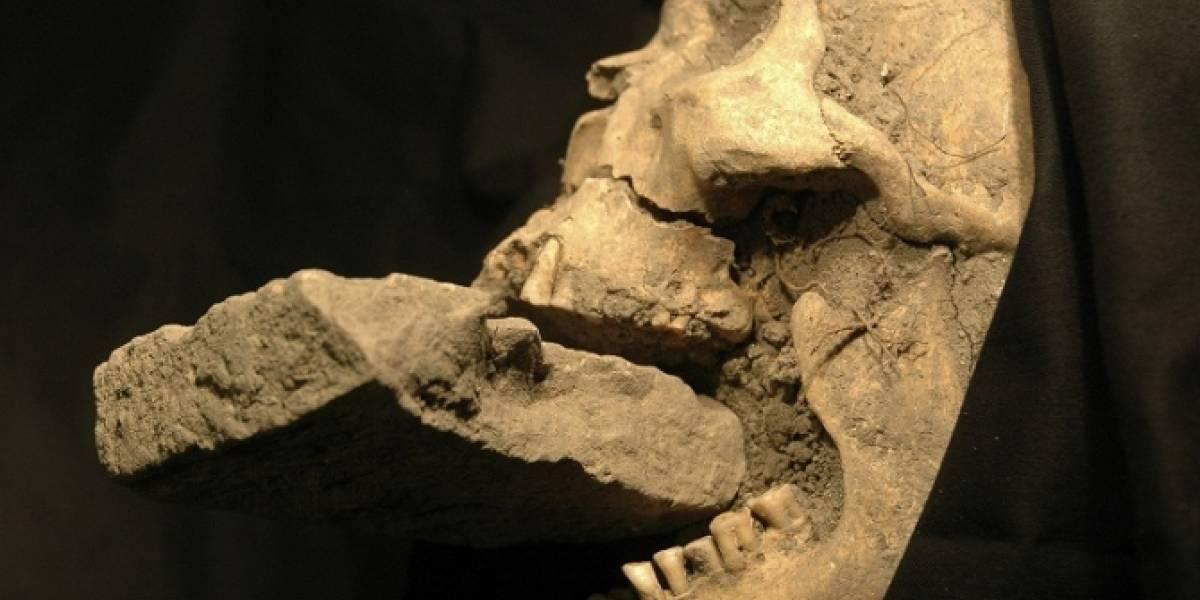 "Descubren esqueletos de supuestos ""vampiros"" en Bulgaria"