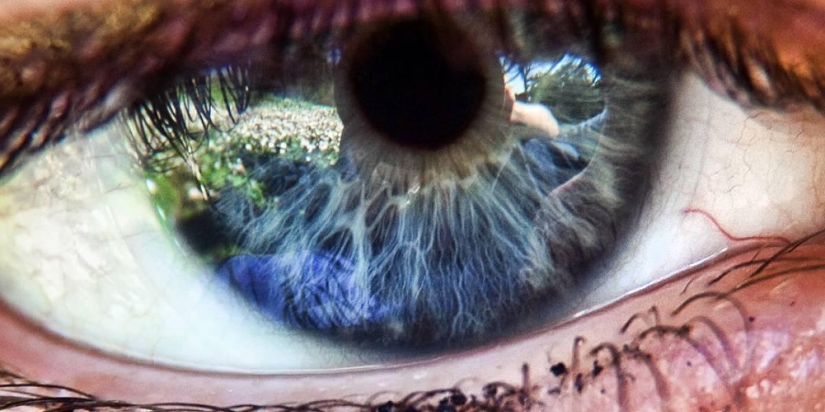 Científicos prueban con éxito el primer implante de un ojo biónico