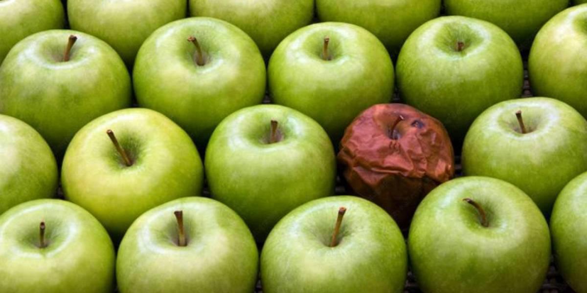 Los seis virus informáticos más importantes que han afectado a los Apple Mac