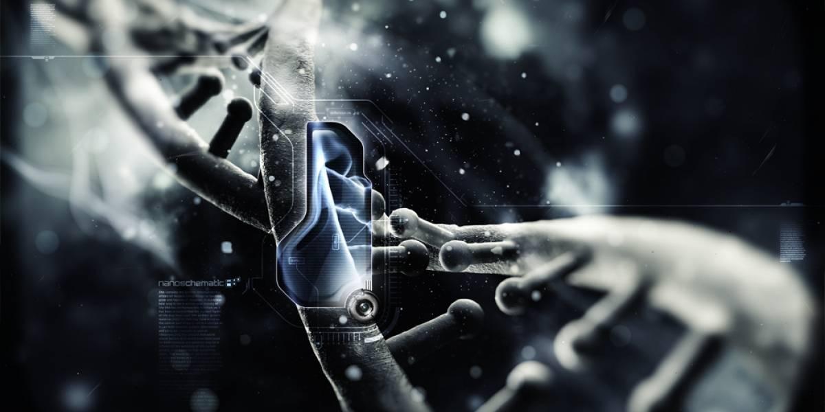 Descubren cómo utilizar el ADN para crear los súper materiales del futuro