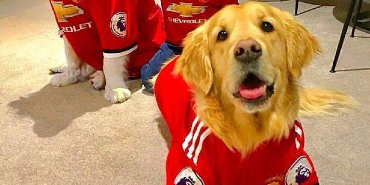 Humber y Atom ahora son Diablos: Alexis festeja como niño su llegada a Manchester United