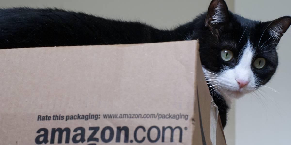 Ganancias de Amazon bajaron 45% en el cuarto trimestre de 2012