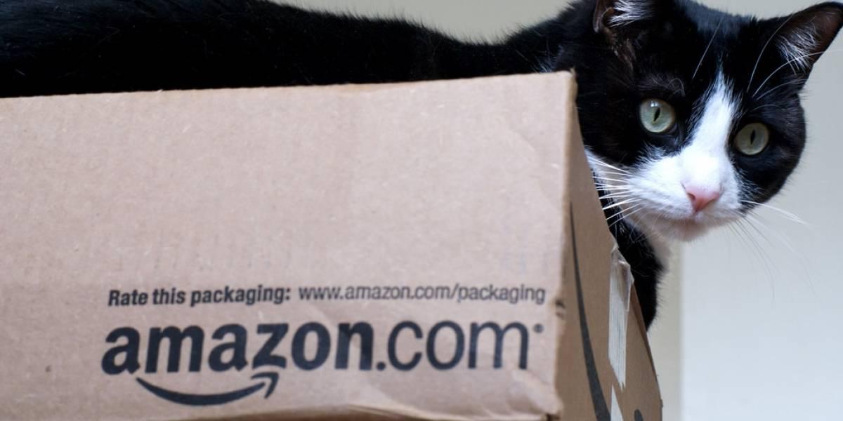 Amazon ya estaría trabajando en domótica y vestibles