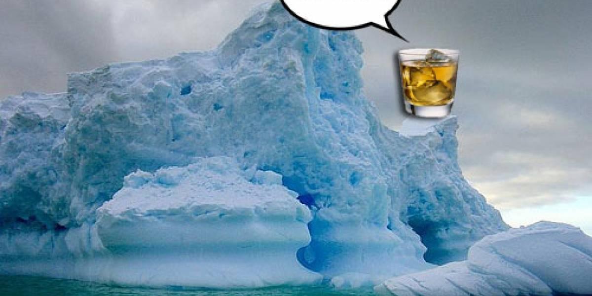 Exploradores abrieron hoy caja de whisky de 100 años rescatada de la Antártica
