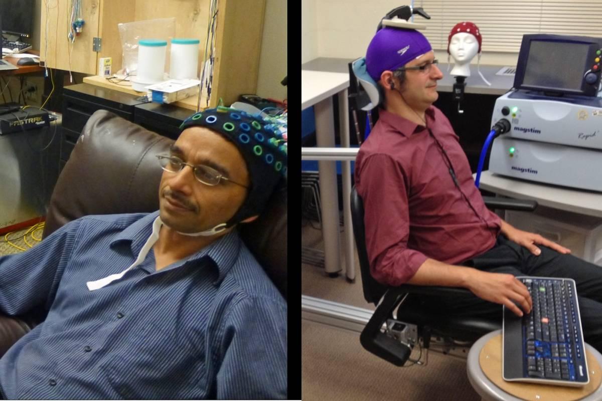 Científicos lograron comunicar directamente dos cerebros humanos a través de Internet