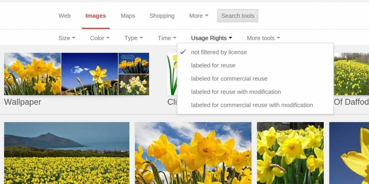 Google facilitó filtrar las imágenes por su licencia de uso
