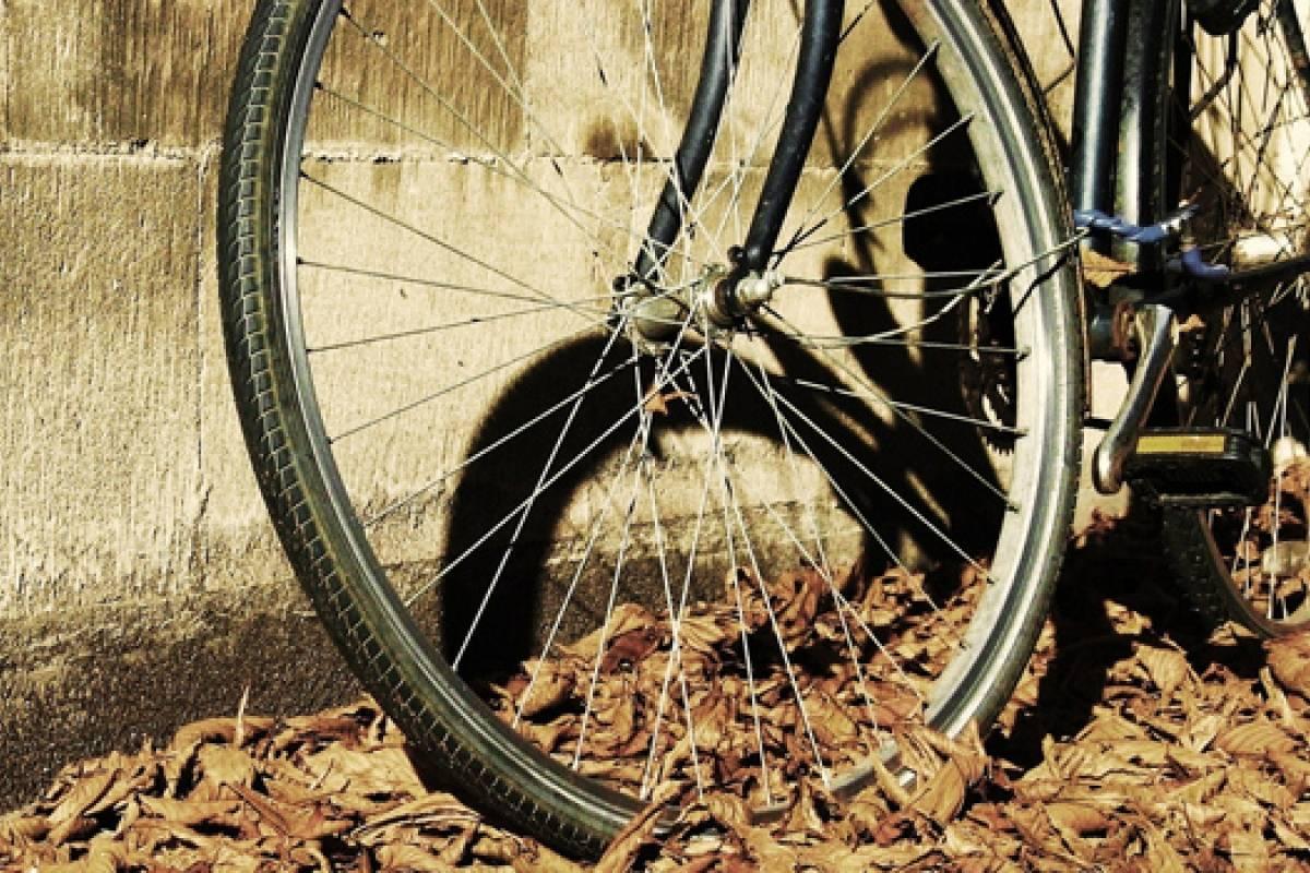 El origen de la bicicleta