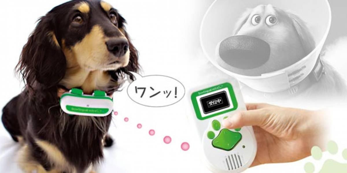 Bowlingual: Mira quién habla en japonés