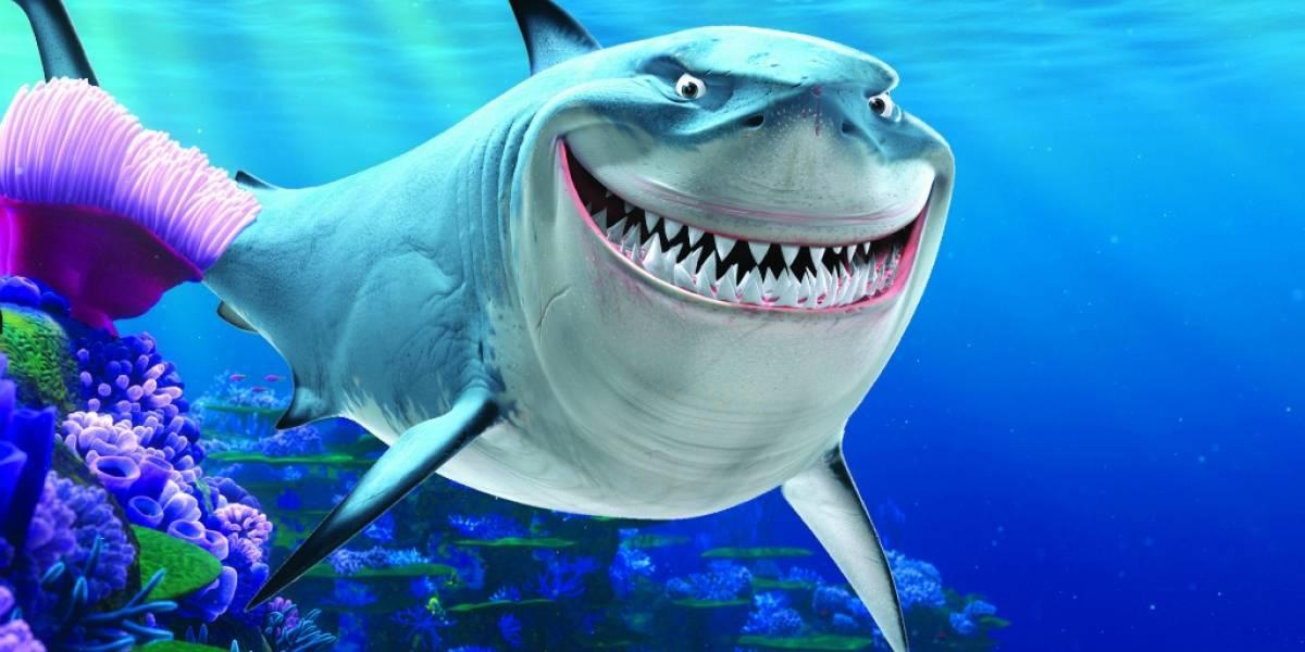Airbnb ofrece la primera cama debajo del agua rodeada por tiburones