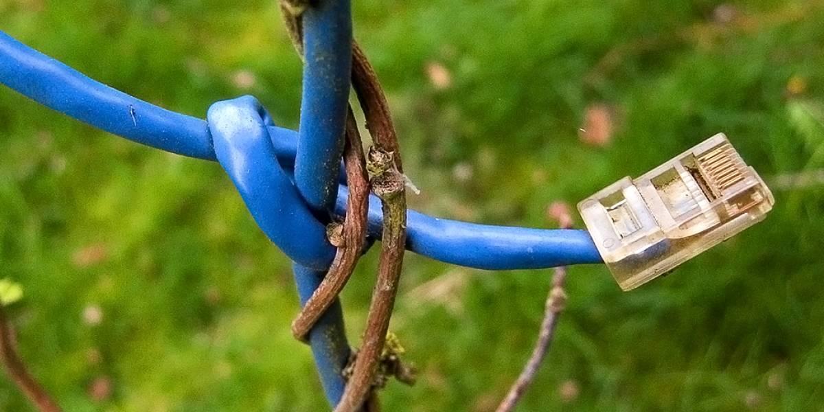Gobierno en Nicaragua prepara ley para controlar el Internet