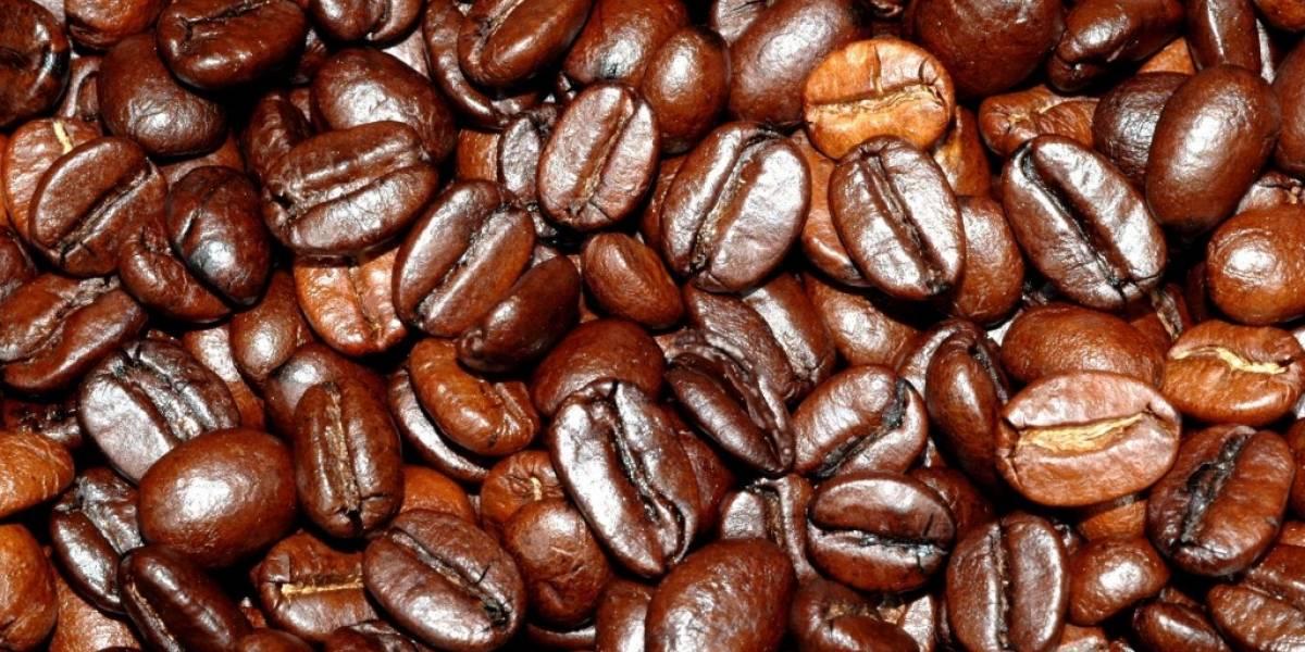 Científicos crean bebida alcohólica usando granos de café