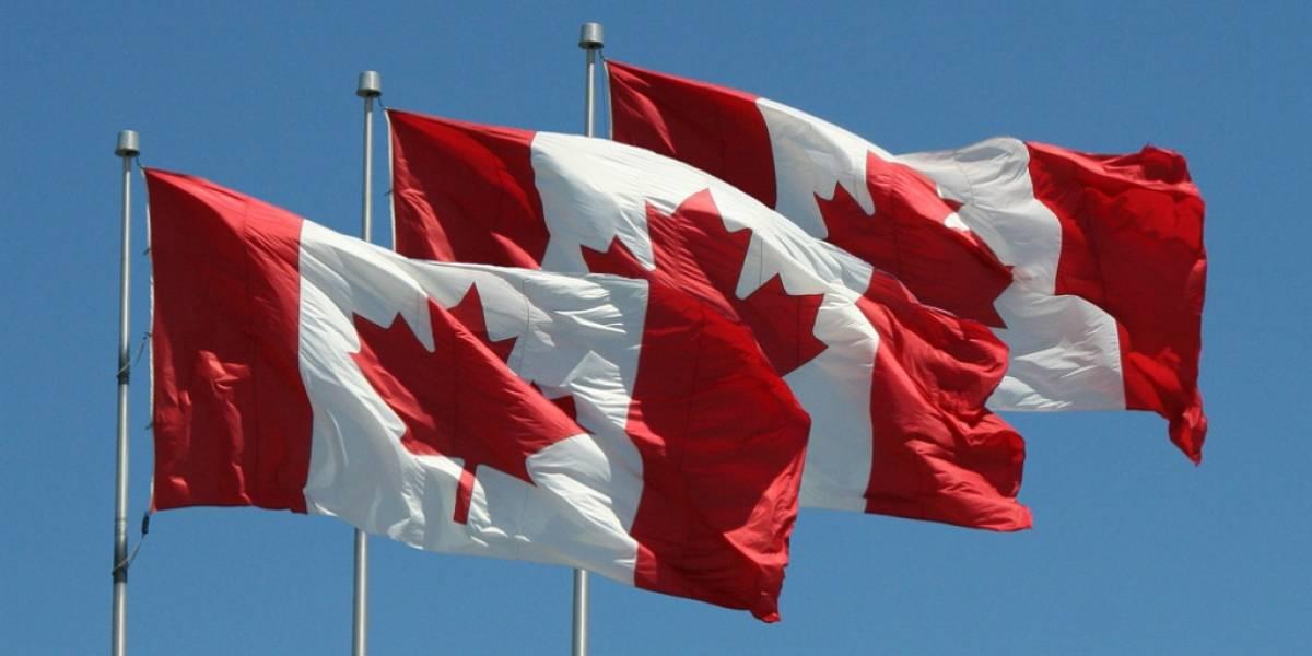 Google pierde apelación y lo obligan a borrar a empresa canadiense