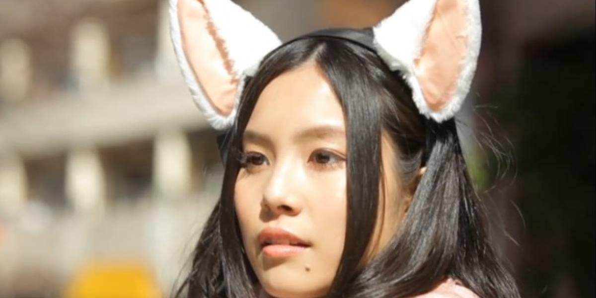 Estas orejas de gato detectan ondas cerebrales