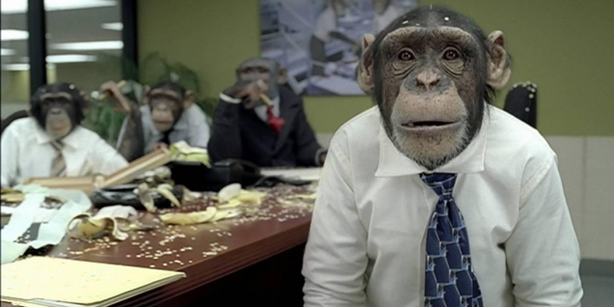 MonkeyLearn: hacia la democratización de la inteligencia artificial