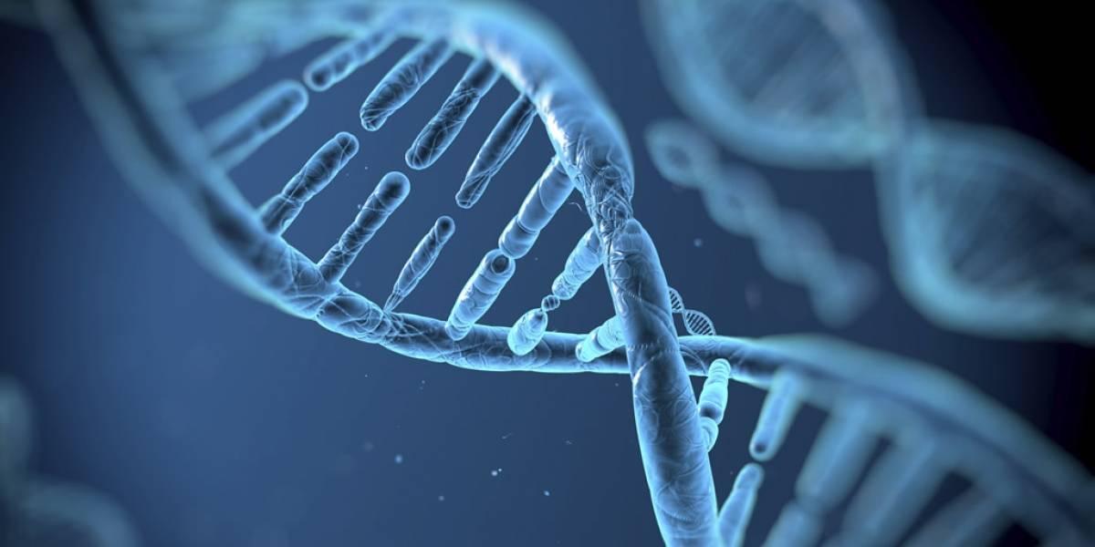 Científicos mejoraron la técnica CRISPR de edición genética