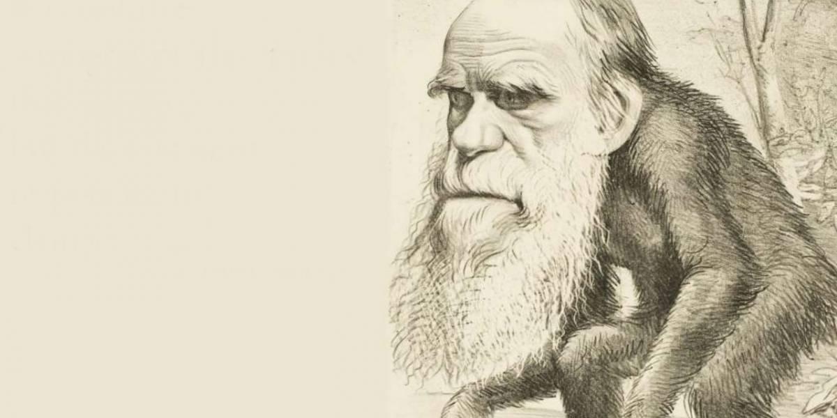 El Origen de las Especies de Charles Darwin es el libro académico más influyente de la historia