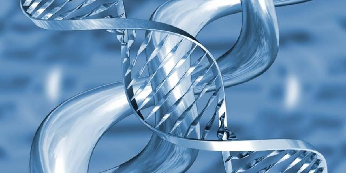 Científicos publicarán su genoma en Internet para invitar al mundo a seguirlos