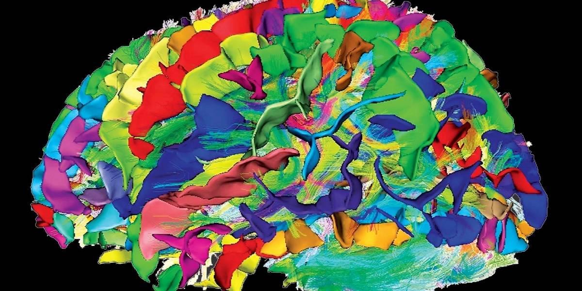 Efectos de la meditación en la estructura del cerebro