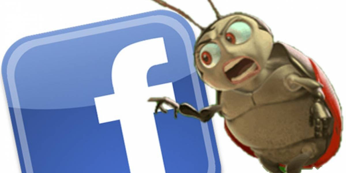 Facebook entregará recompensas a quienes encuentren bugs