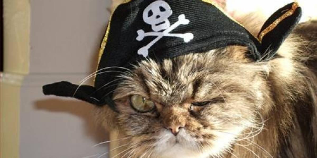 Principales compañías de telefonía de EEUU acuerdan en penalizar a los piratas