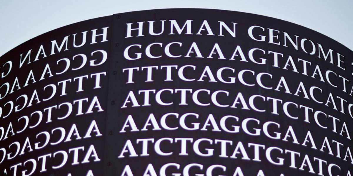 Craig Venter contrata al líder de Google Translate para traducir el genoma humano