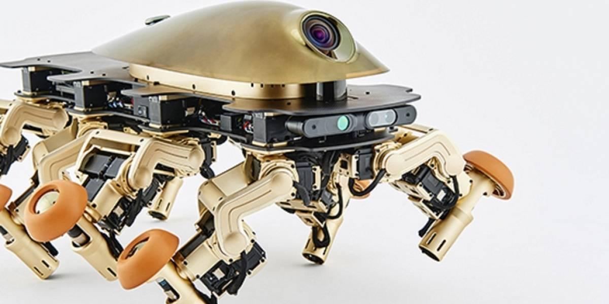 """Crean un robot basado en el """"fósil más raro de la historia"""""""