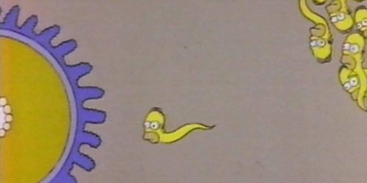 Científicos descubren que la cantidad de espermatozoides bajó un tercio en los últimos 20 años