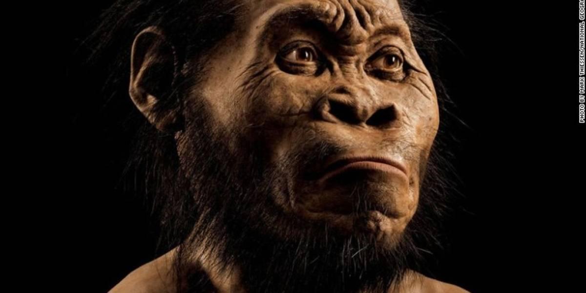Descubierto el Homo naledi, un nuevo antepasado del hombre
