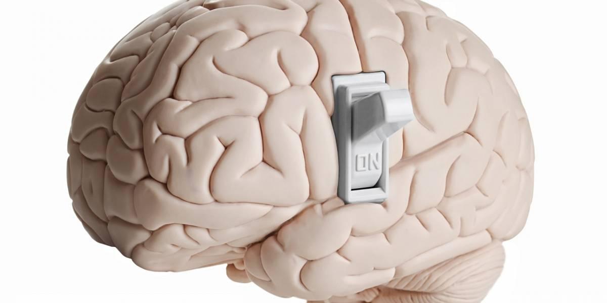 """Descubren el """"interruptor"""" de la consciencia humana en el cerebro"""