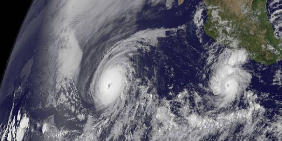 Los huracanes prefieren la clorofila