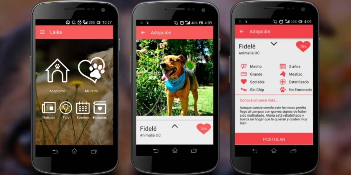 Laika, la app para adopción y tenencia responsable de perros