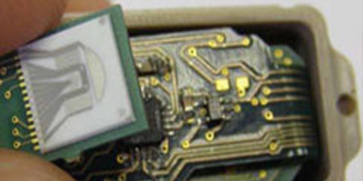 Desarrollan un microchip para vigilar el crecimiento de tumores