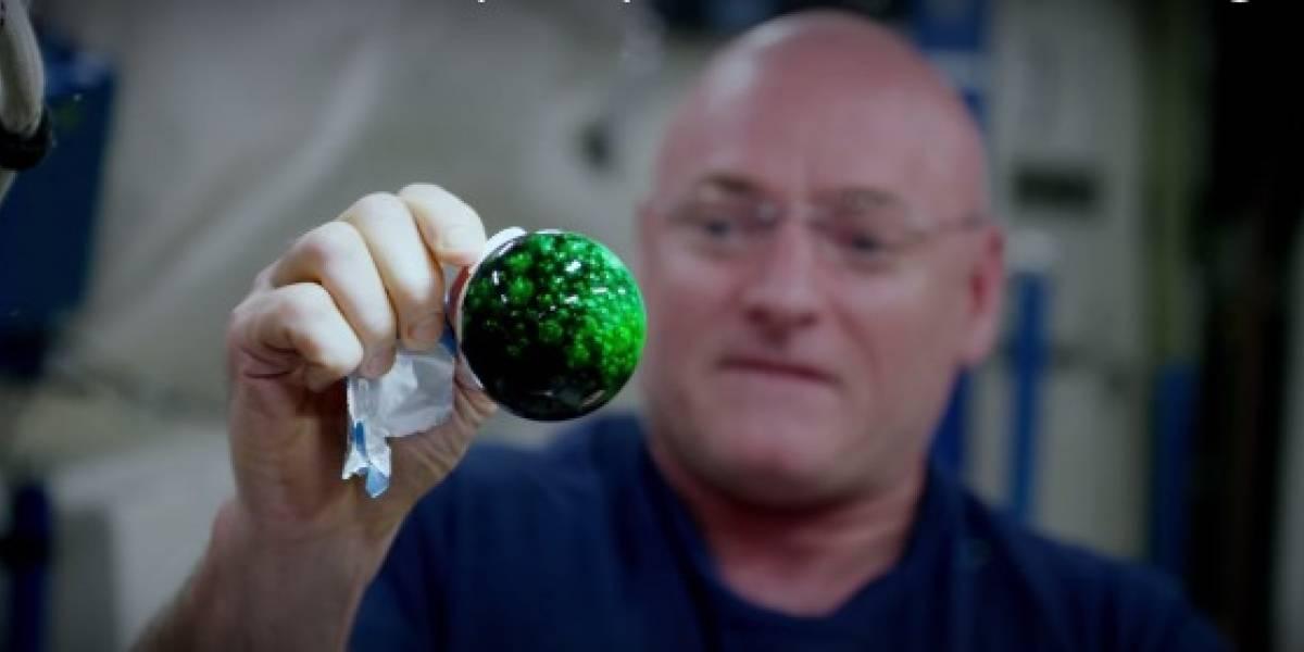 Astronautas graban video 4K con diferentes líquidos en el espacio
