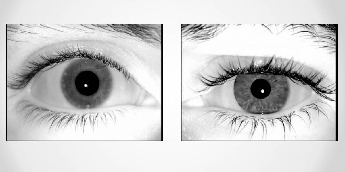 Crean imágenes falsas de ojos que pueden engañar a los escaner de seguridad