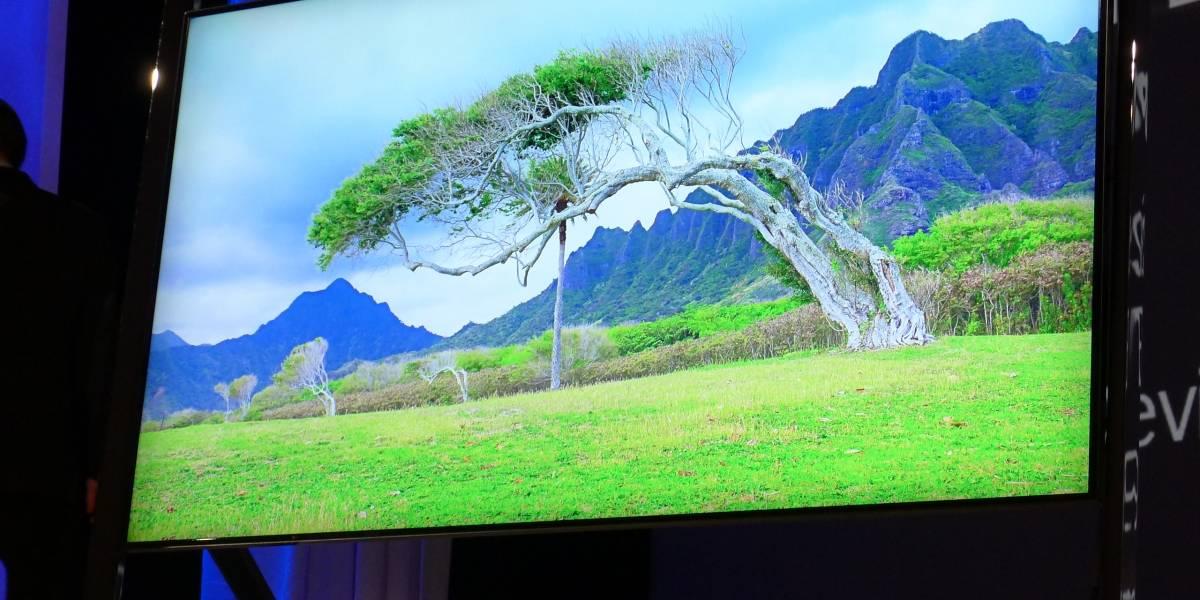 UDI plantea veto a la Ley de TV Digital tras fallo del Tribunal Constitucional