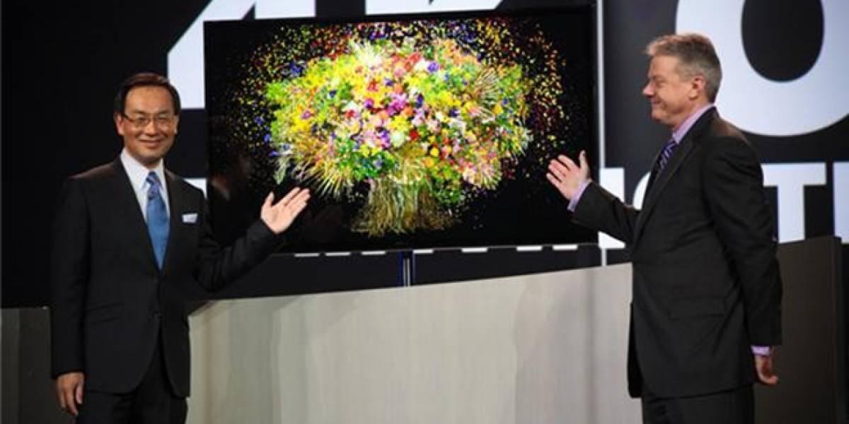 CES 2013: Panasonic presenta su prototipo de televisión OLED con definición 4K