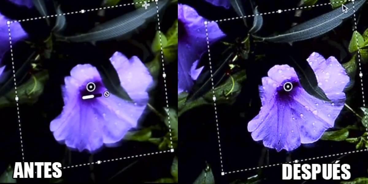 Próxima versión de Photoshop corregirá fotografías que hayan salido movidas