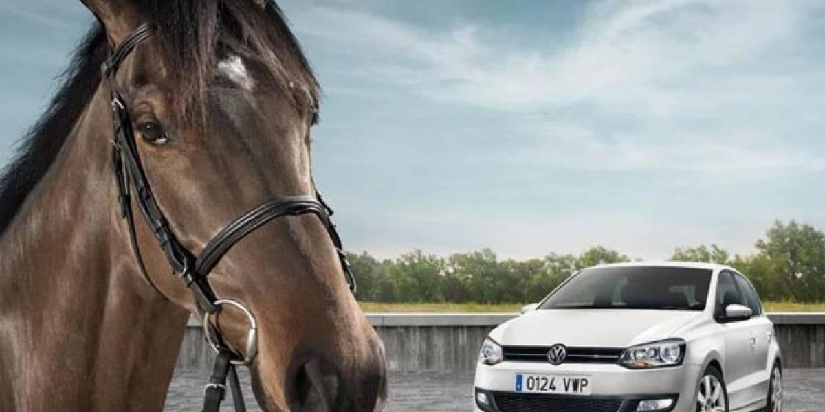 ¿Indeciso entre comprar un caballo o un coche? Aquí te sacamos de dudas