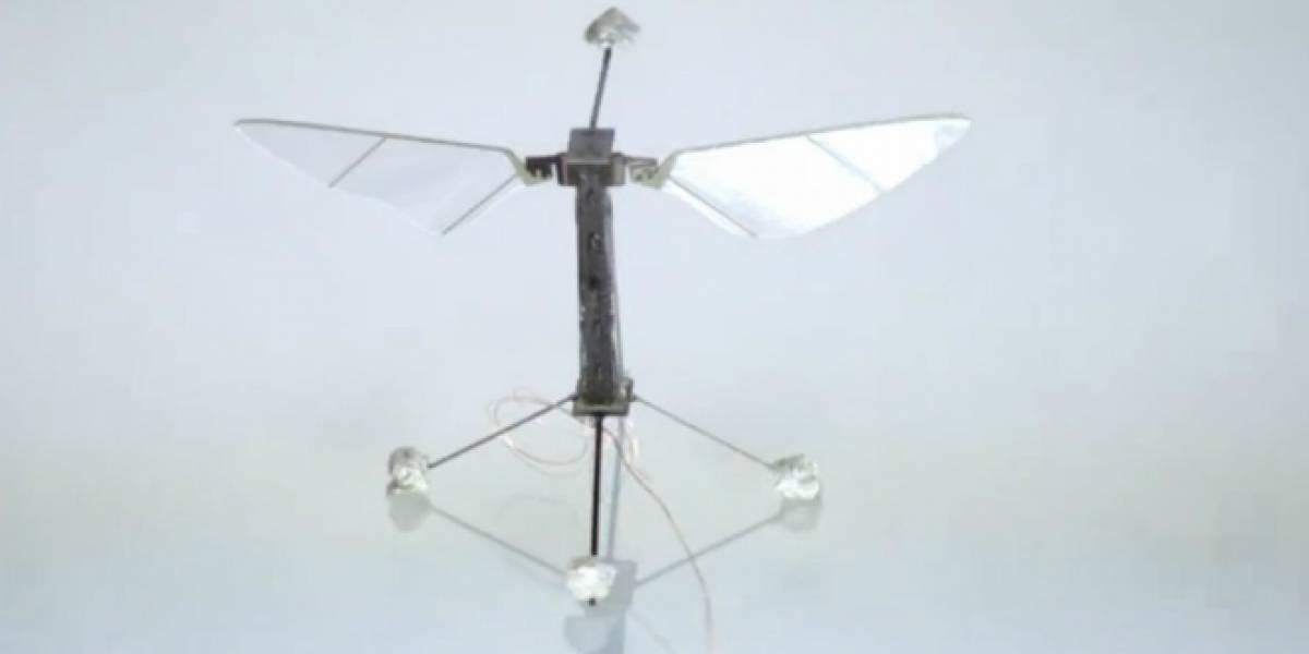 RoboBee, el robot volador más pequeño del mundo