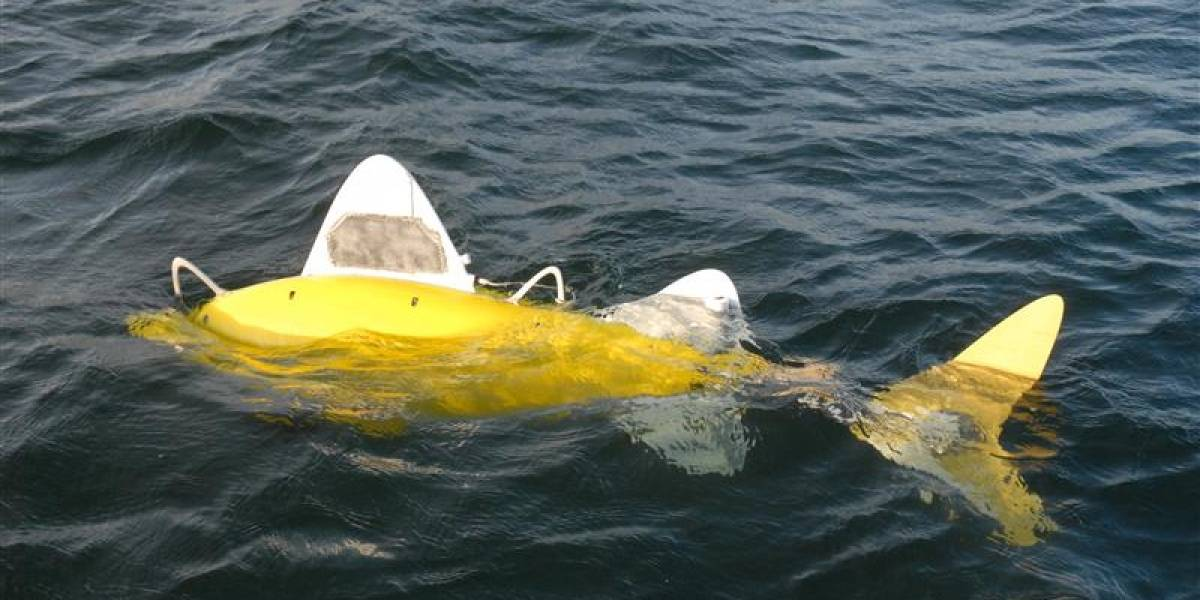 Robofish: El pez robot que puede olfatear y limpiar contaminaciones en el mar