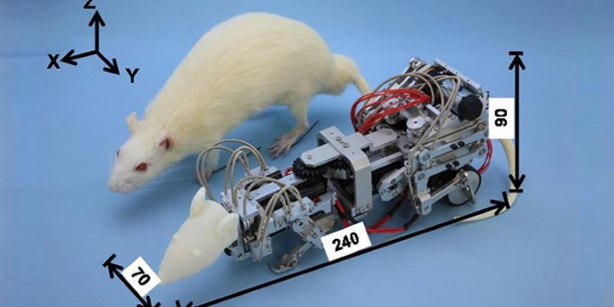 Japoneses crean un ratón robot para estresar y deprimir a ratones reales