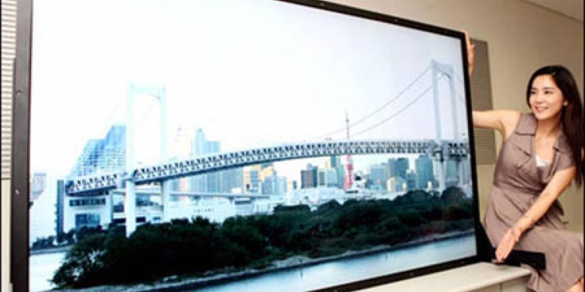 La Comisión Europea impone millonaria multa a fabricantes de LCD por colusión