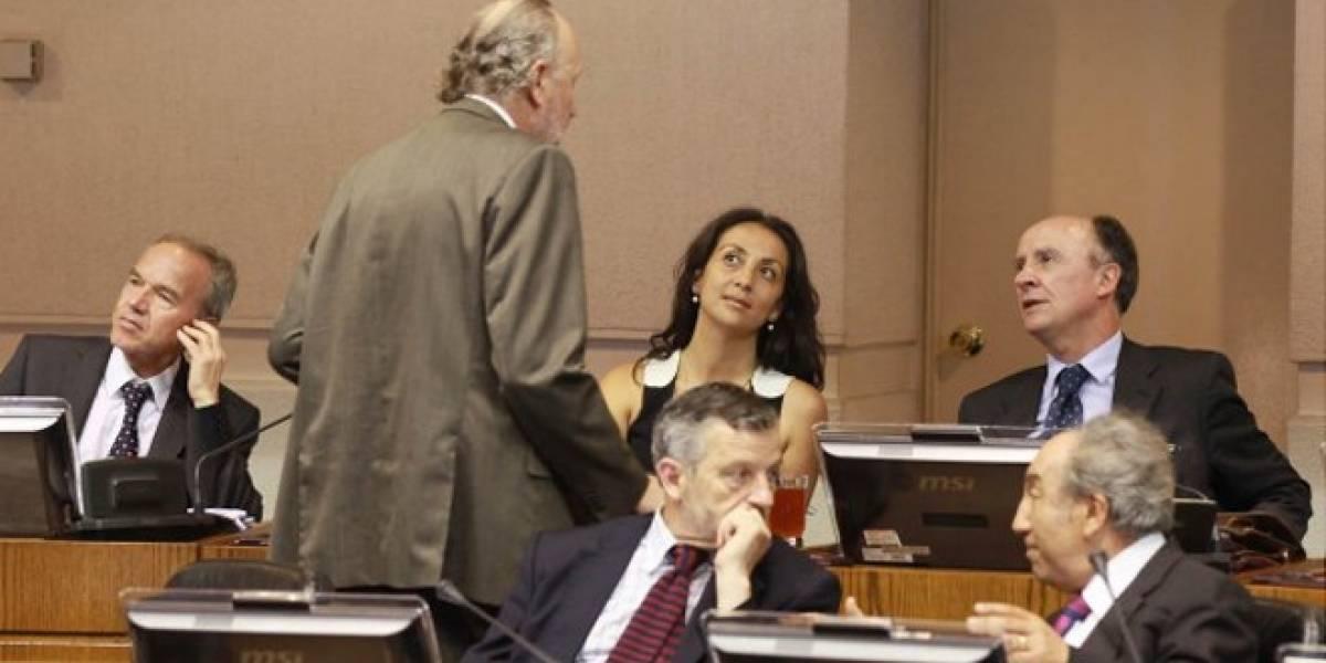 Chile: Congreso aprueba la creación de empresas en un día