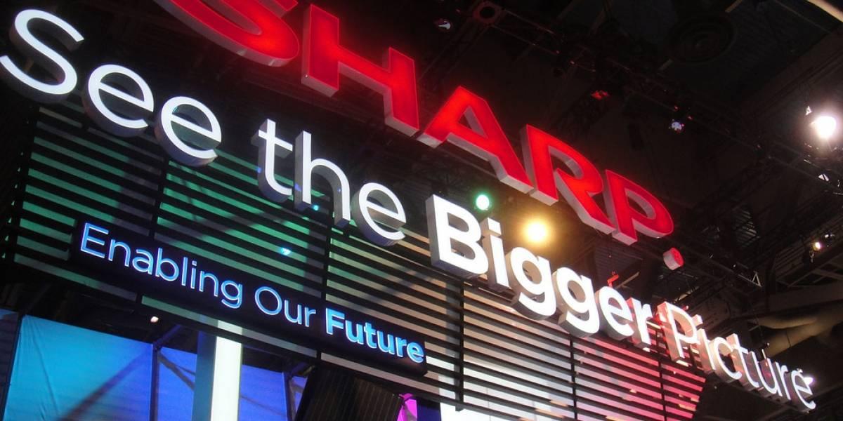 Sharp anuncia un televisor 8K y con 3D sin lentes #CES2014