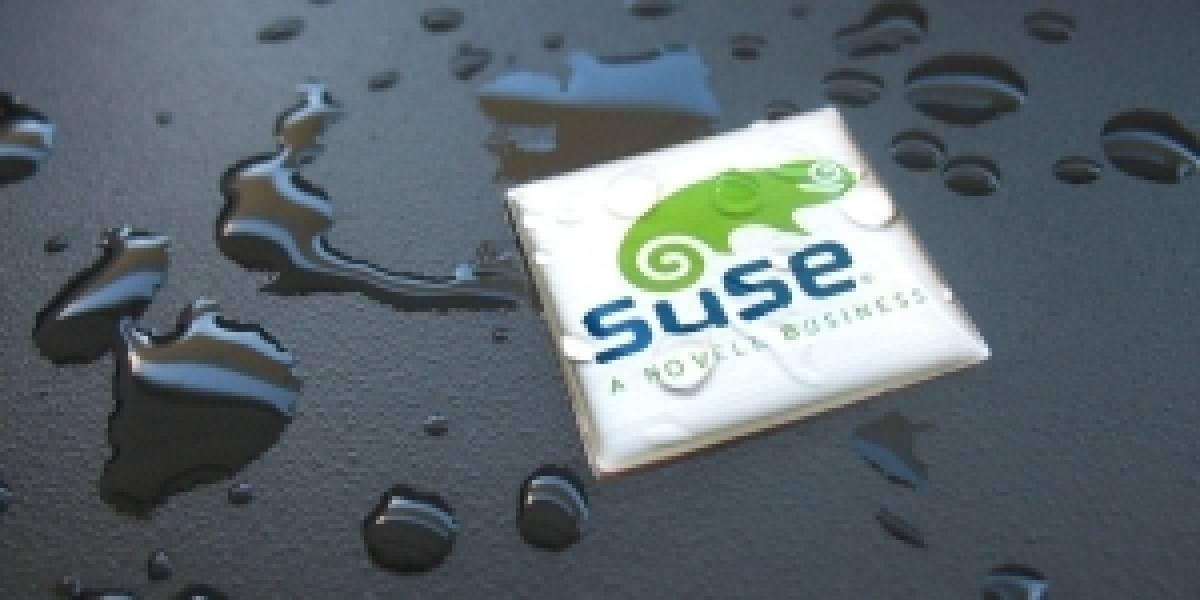 Futurología: VMWare compraría SuSE Linux a Novell