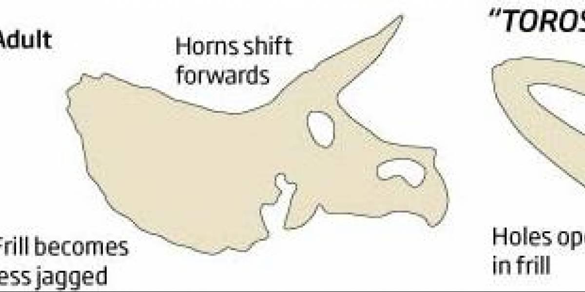 Impresentable: El Triceratops nunca existió