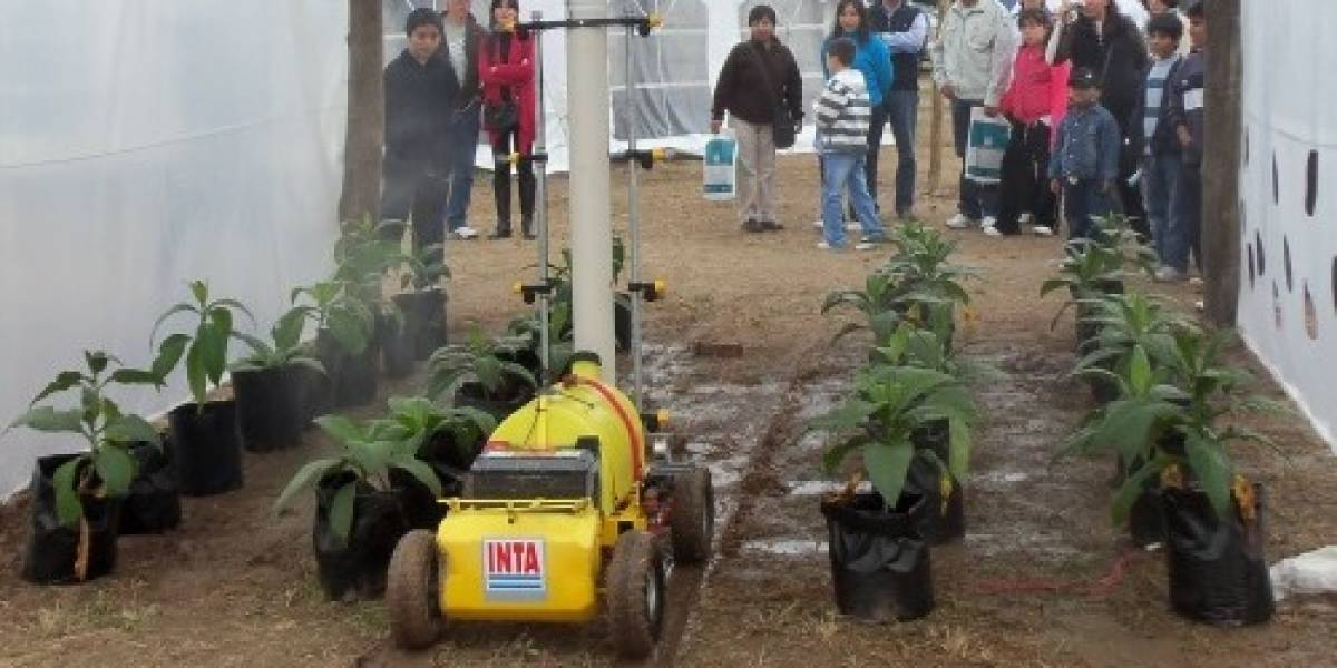 Argentina: Desarrollan un robot que optimiza la producción en invernaderos