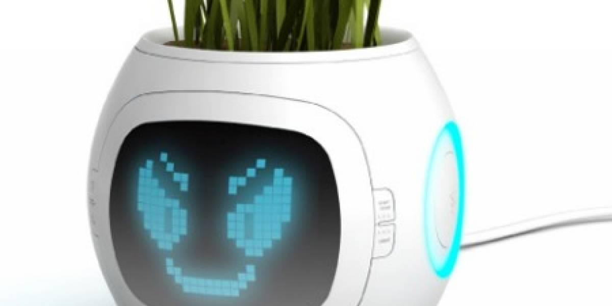 Macetero USB le da vida virtual a tus plantas