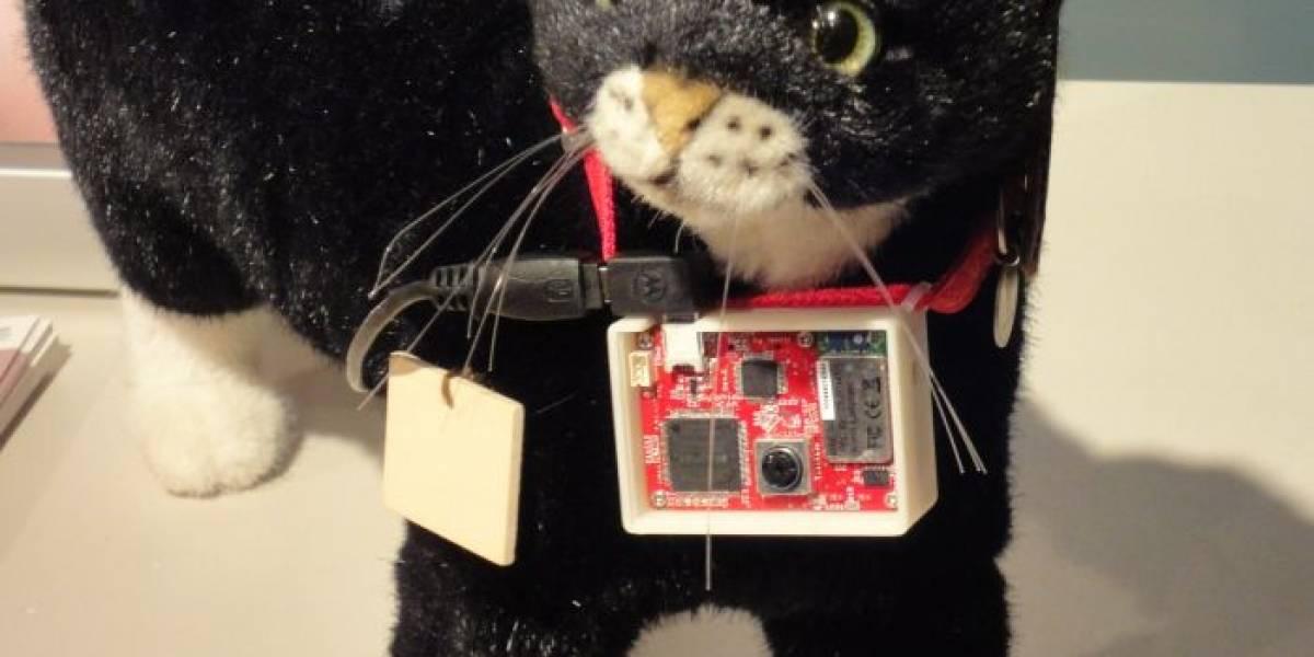 """Cat@Log: Sony hace que los gatos manden """"tweets"""""""